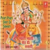 Pyari Lage Sher Di Sawari Songs