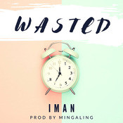 Wasted Song