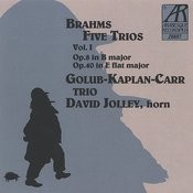 Brahms: Five Trios, Volume I Songs