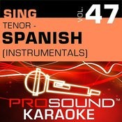 Solamente Tu Amor (Karaoke With Background Vocals) [In The Style Of Chayanne] Song