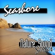 Seashore (Nature Sounds) Songs