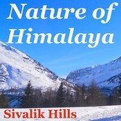 Nature Of Himalaya Songs