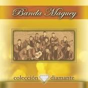 Coleccion Diamante Songs