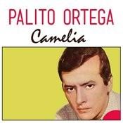Camelia Songs
