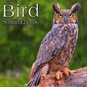 Bird Sound Effects, Vol. 2 Songs