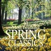 Vivaldi : Le quattro stagioni [The Four Seasons], Violin Concerto in F major Op.8 No.3 RV293, 'Autumn' : I Allegro Song