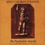 Meet Caliban Strange Songs