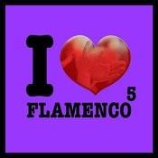 I Love Flamenco Vol.5 Songs