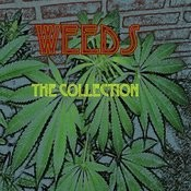 Weeds The Collection Songs