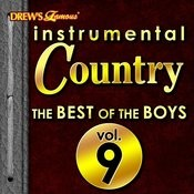 Instrumental Country: The Best Of The Boys, Vol. 9 Songs