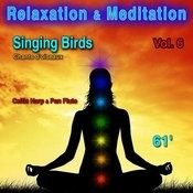 Relaxation & Meditation Vol. 6: Singing Birds (Chants D'oiseaux) Songs