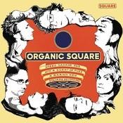 Organic Square Songs