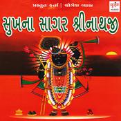 mara ghat ma birajta shreenathji