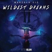 Wildest Dreams (Radio Edit) Songs
