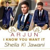 I Know You Want It (Sheila Ki Jawani) Song