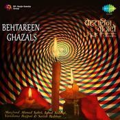Behtareen Ghazlen Songs
