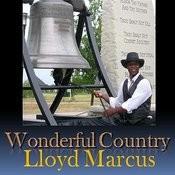 Wonderful Country (Single) Songs