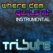 Where Them Girls At (David Guetta Feat. Nicki Minaj & Flo Rida Tribute) - Instrumental Songs