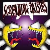 Screaming Daisies Songs