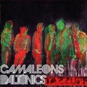 Camaleons Daltònics Songs