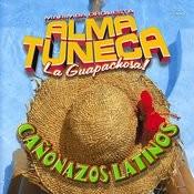 Cañonazos Latinos Songs