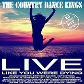 20 #1 Hit Songs - Live Like You Were Dying Songs