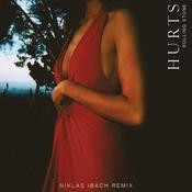 Rolling Stone (Niklas Ibach Remix) Song