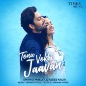 Tenu Vekhi Jaavan Songs