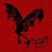 Eagles & Vultures Songs