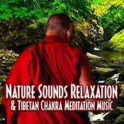Nature Sounds Relaxation & Tibetan Chakra Meditation Music Songs