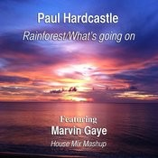 Rainforest/What's Going On (House Mix Mashup) [Feat. Marvin Gaye] Songs