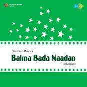 Balma Bada Naadan Songs
