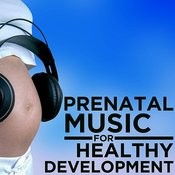 Prenatal Music For Healthy Development Songs