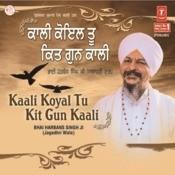 Main Har Bin Tek Dhar Avar Na Kayee Song