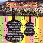 Los Rancheros En Sones Huastecos Songs