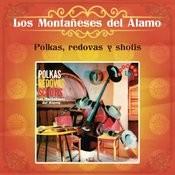 Polkas, Redovas Y Shotis Songs