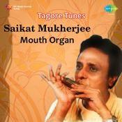 Saikat Mukherjee Tagore Tunes M Organ Songs