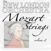 String Quartet No. 2 In D, K. 155, III. Allegro Molto Song