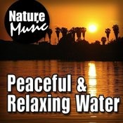 Peaceful And Relaxing Water (Nature Sound With Music) Songs