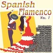 Spanish Flamenco Vol. 1 Songs