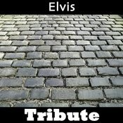 All Shook Up: Tribute To Elvis Presley Part 1 Songs