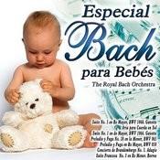 Especial Bach Para Bebes Songs