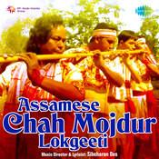 Assamese Chah Mojdur Lokgeet Songs
