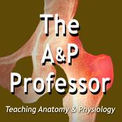 The A&P Professor - season - 1 New Organ, Dam Protons, & Our Secret Language | TAPP 80 Song