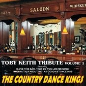 Toby Keith Tribute, Volume 1 Songs