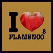I Love Flamenco Vol.8 Songs