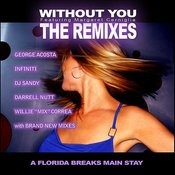 Without You - The Remixes Feat. Margaret Cerniglia Songs