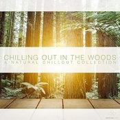 Chilling In The Woods - A Natural Chillout Collection Songs