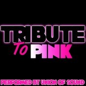 Tribute To Pink Songs