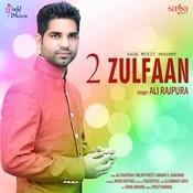 2 Zulfaan Songs